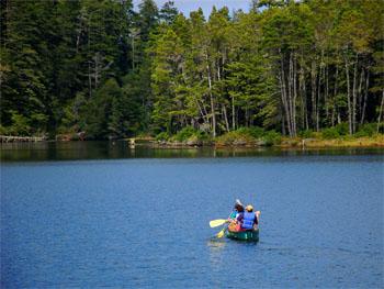 Canoeing-at-Honeyman-State-Park-350x263