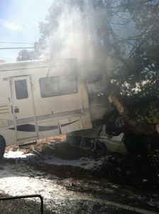 Motorhome-crashes-into-tree