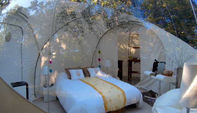 bubbletree tent room