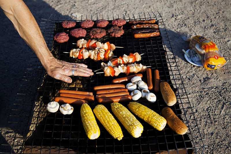 800px-Grilling,_Karin_Beate_Nosterud