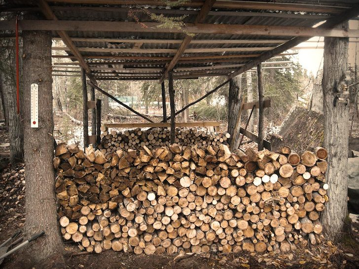 Cud-has-plenty-of-wood-in-his-woodshed