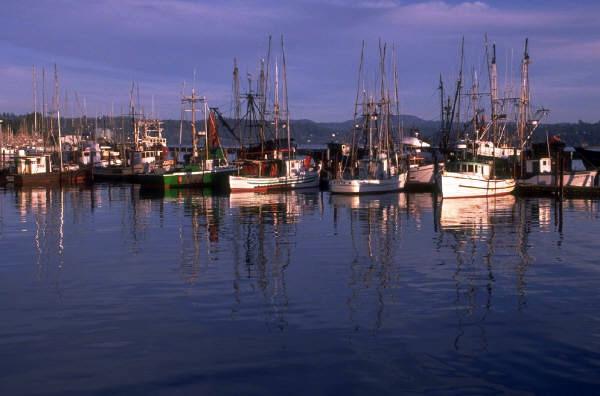 Moss-Landing-Harbor