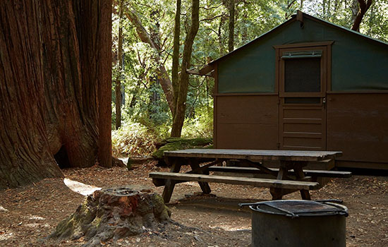 big-basin-redwoods-park-camping