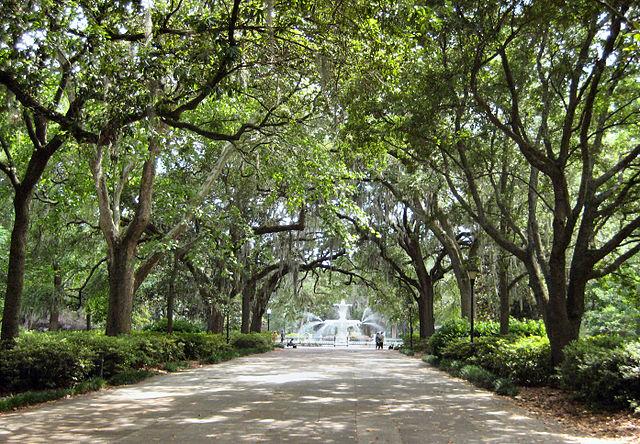 640px-Savannah_Forsyth_Park