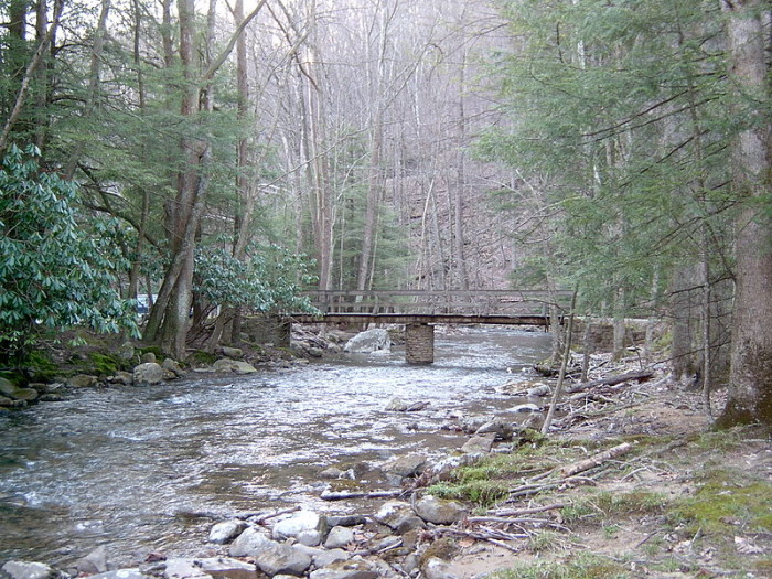 800px-Holly_River_State_Park-700x525