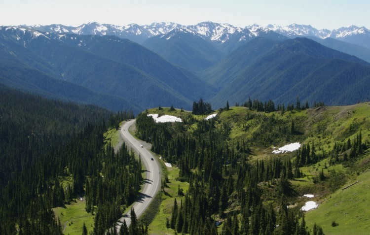 Hurricane-Ridge-Road
