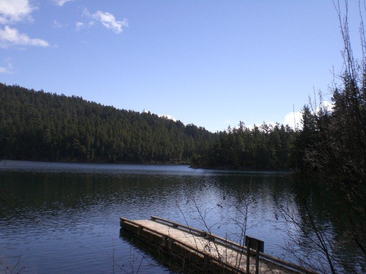 Mountain_Lake_in_Moran_State_Park