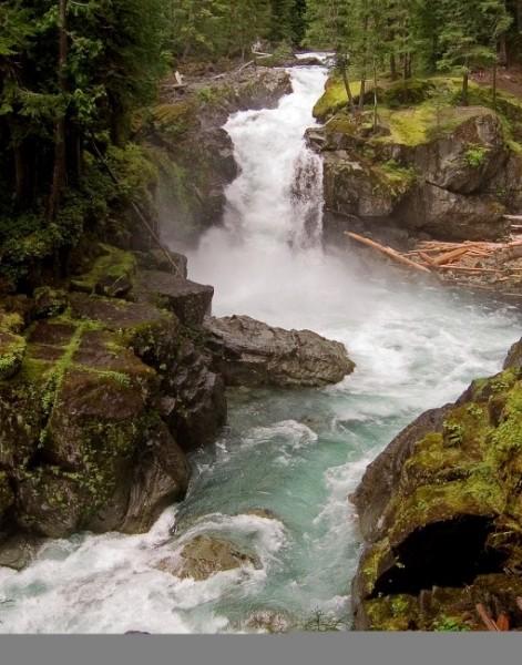 Ohanapecosh_River-Silver_Falls