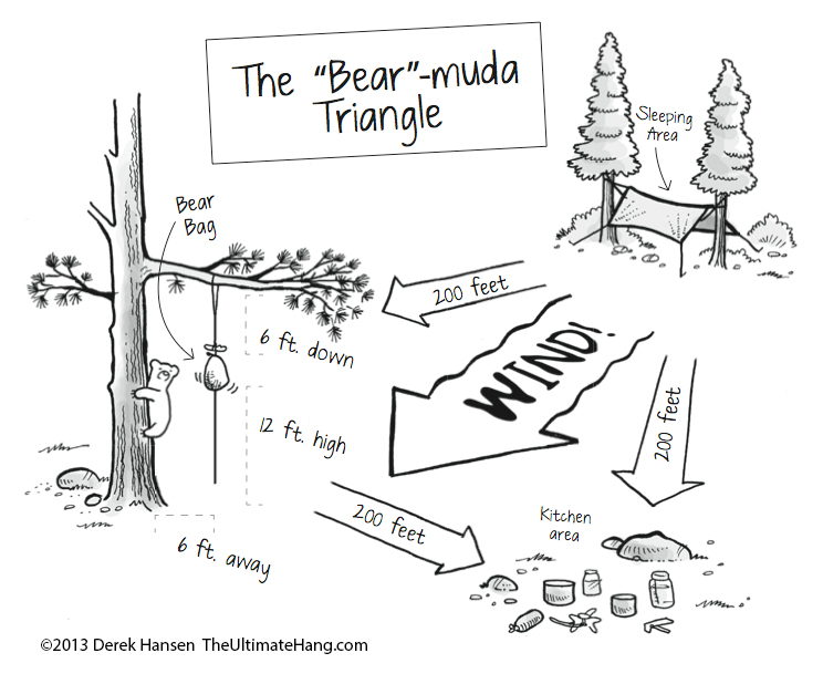 bear-muda-triangle-bear-bag