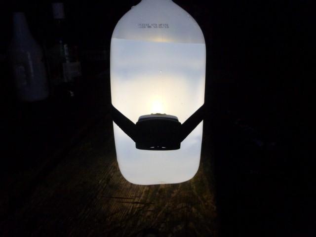 lantern-jug
