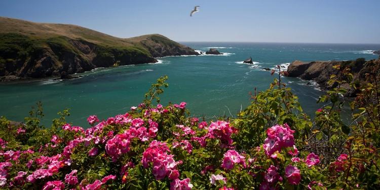 mendocino-coast