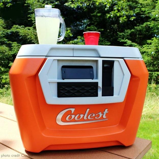 multifunctional cooler