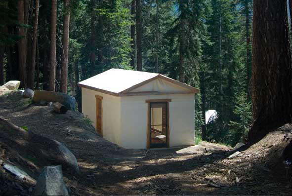 sequoia sierra